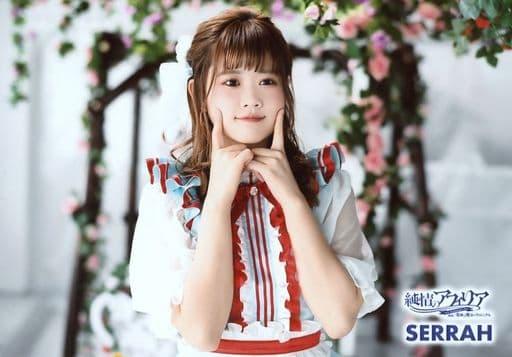 Junjo no Afilia / Sera / Yokogata 「 Miracle and Magic Chronicle 10 th Anniversary Tour 」 / 2019 Tour Costume Photo Set