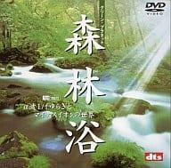BGV Forest Bathing Green Planet