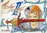 Final Fantasy (video game) II