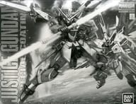 1/100 MG ZGMF-X09A Justice Gundam Special Coating 「 MOBILE SUIT GUNDAM SEED 」 Premium Bandai Only [0219570]