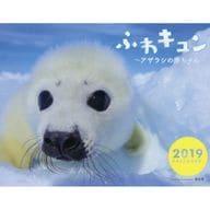 Fuwa Kyun-Baby Seal-2019 Calendar