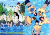 A3 Clear Poster 2-Pack Set (Poolside / Swimming) 「 Free! 」 Kyo Ani Shop Original Goods