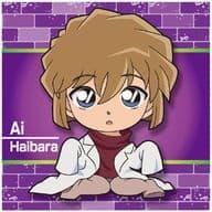 4. N-4 Ai Haibara 「 Detective Conan APTX (Apotoxin) 4869 Gumi with Chijimi Squad 」