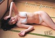 Sumire Yokono (NMB48) B5 Clear File Young Champion Ryutsu 2020 No. 6 Appendix I. F. C. No. 329