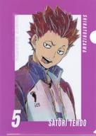 """Tendokaku Ani-Art 5 th A4 clear file """"Haikyu! TO THE TOP"""""""
