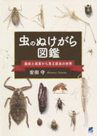 The World of Insects from the Perspective of ting and Growth