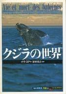 鲸鱼的世界