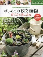 First Succulent Plant Growing Method & How to Enjoy
