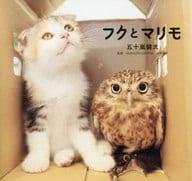 Fuku and Marimo