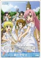 P-05 [Promotion] : [White Party] Katsura Daisy