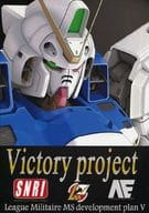 Victory project