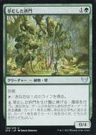 139/275[U]:草地拱门/Overgrown Arch